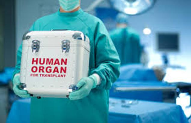 The Gift of Life- Organ Transplant