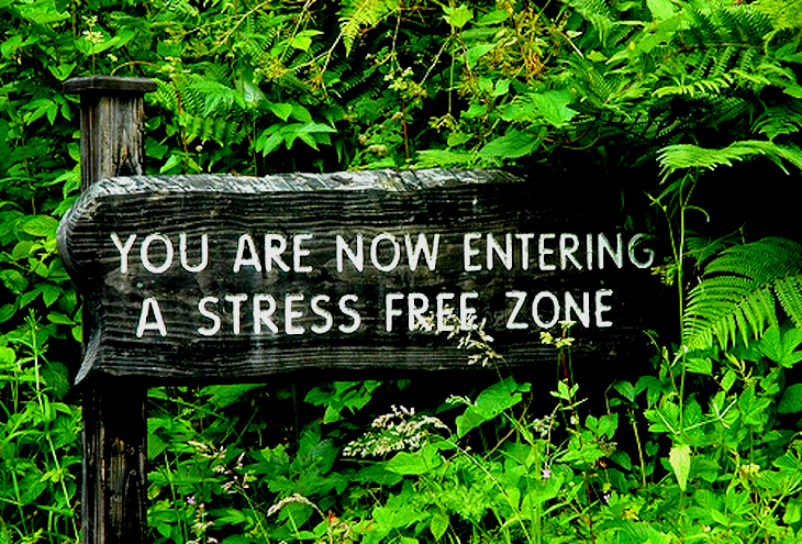 Nature Will Help You To Be Stress Less And Free